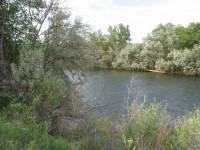 13 Enchanting Spots In New Mexico You Never Knew Existed - Berg and Boyd Park
