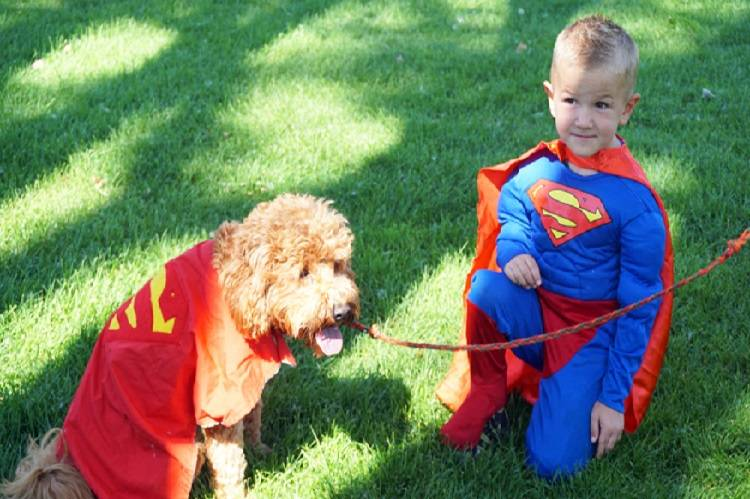 Kids' Dog Show