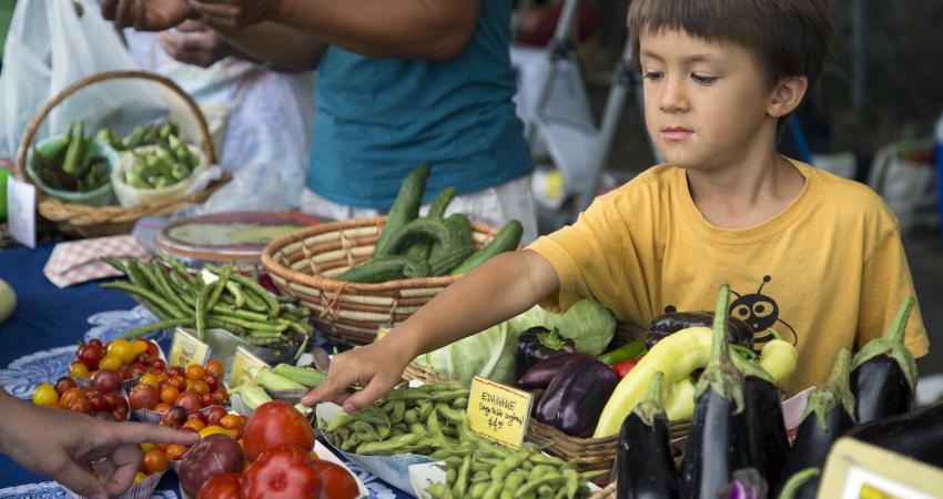 Farmington Grower's Market