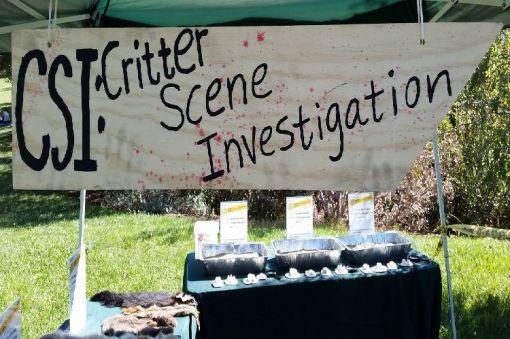 CSI: Critter Scene Investigation at Aztec Ruins