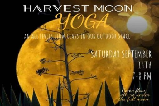 Harvest Moon Yoga Flow