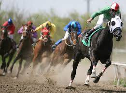 Live Horse Racing