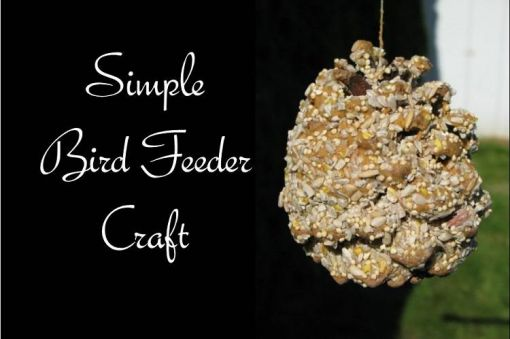 Make Simple Bird Feeders