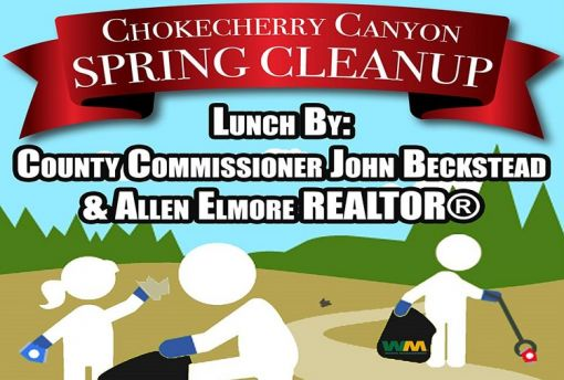 Chokecherry Spring Cleanup