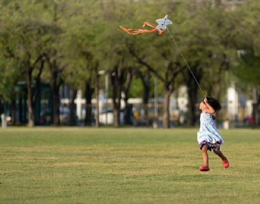 Kite Flying Festival and Health and Wellness Fair