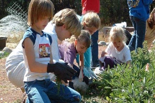 Garden Volunteers Day