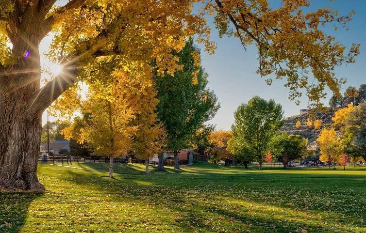 Brookside Park