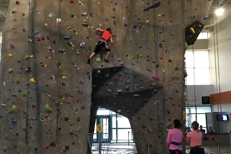 Indoor Rock Climbing Wall Farmington